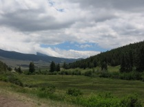 the valleys along the Scenic Byway were lush and green. Large Ponderosa Pine and fir and spruce along the mountainsides