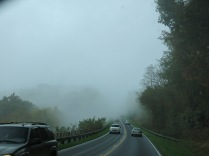 we encountered rain and fog along Newfound Gap Road