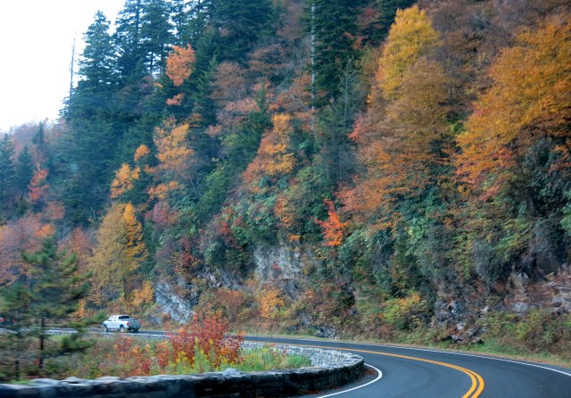 Newfound Gap Road, Great Smoky Mountain National Park