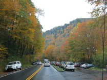 a lot of cars parked at the Alum Cave Trailhead.