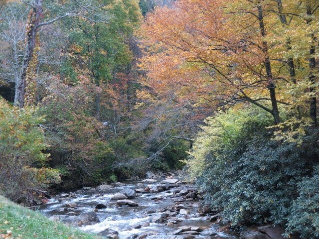 West Prong Little Pigeon River - Great Smoky Mountain National Park