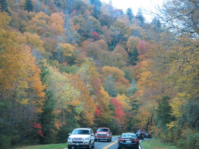 Newfound Gap Road - Great Smoky Mountain National Park - very crowded on Columbus Day : )