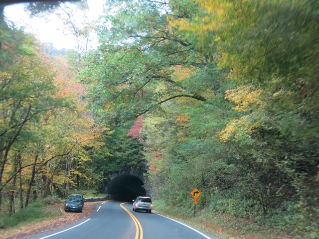 Newfound Gap Road - Great Smoky Mountain National Park