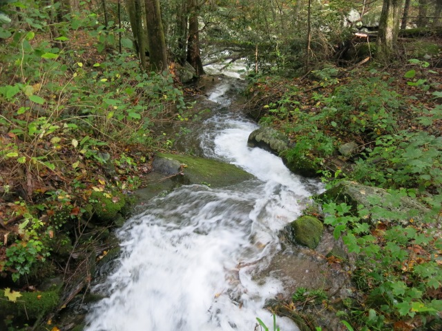 smaller stream or rain run off to the side of the trail
