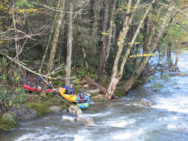 Kayakers, just putting in the river - Little Pigeon River