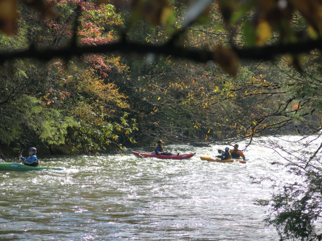 Kayakers on the Little Pigeon River
