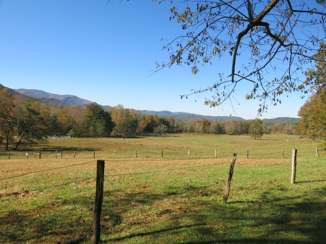 Cades Cove Loop Road by Stables - Great Smoky Mountains National Park