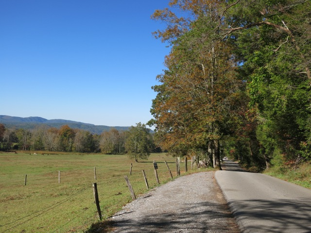 Cades Cove Loop Road  - Great Smoky Mountain National Park