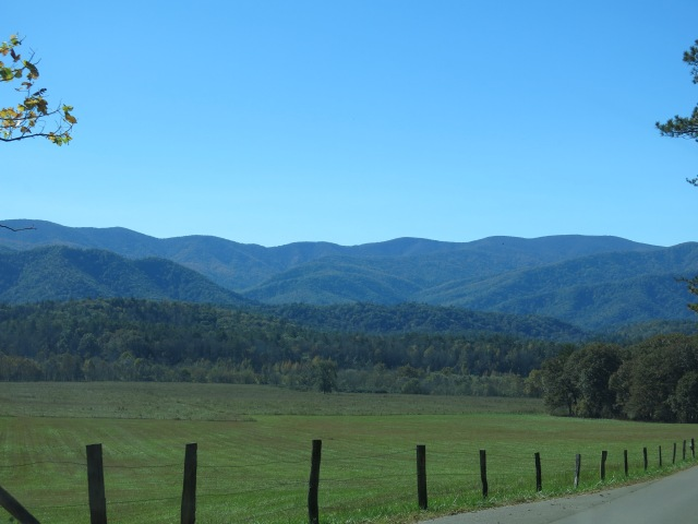 View from Cades Cove Loop Road