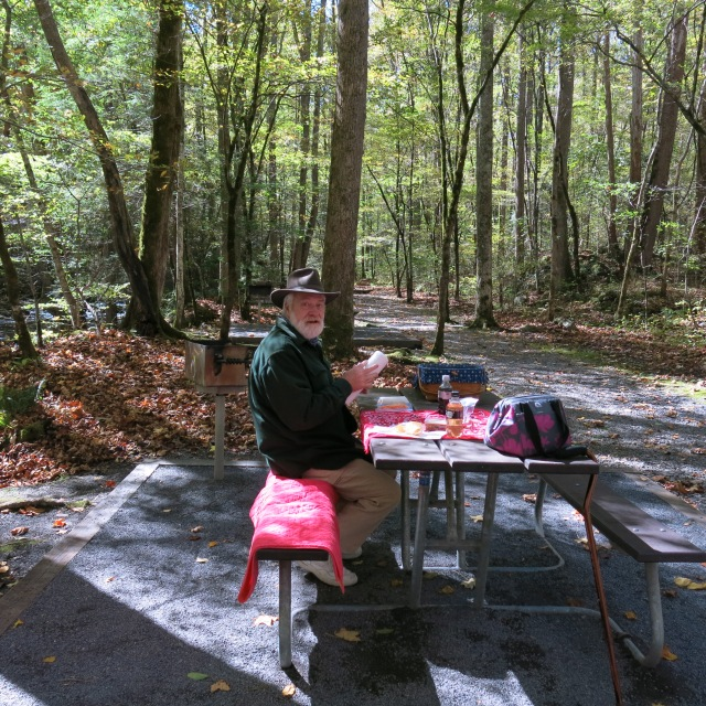 picnic at Big Creek, Great Smoky Mountain NP