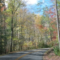 driving to Roaring Fork Motor Trail